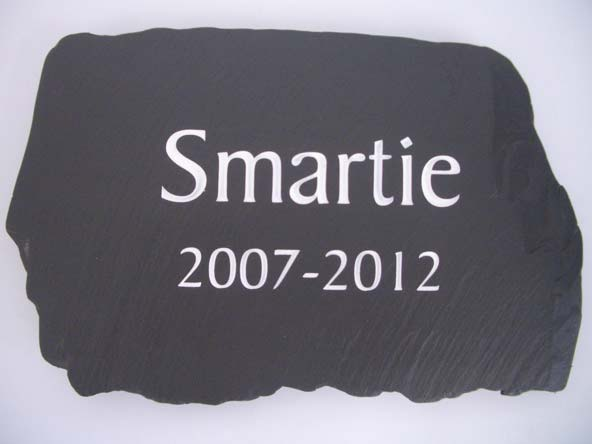 dog memorial for smartie the canine aged only 5