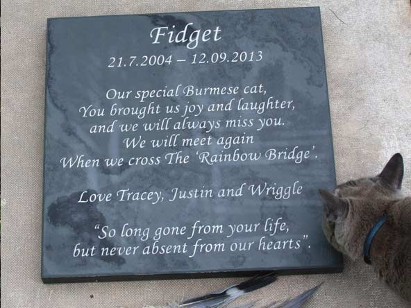 memorial plaque for cats