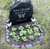 birds eye view of the headstone for elliot forever loved