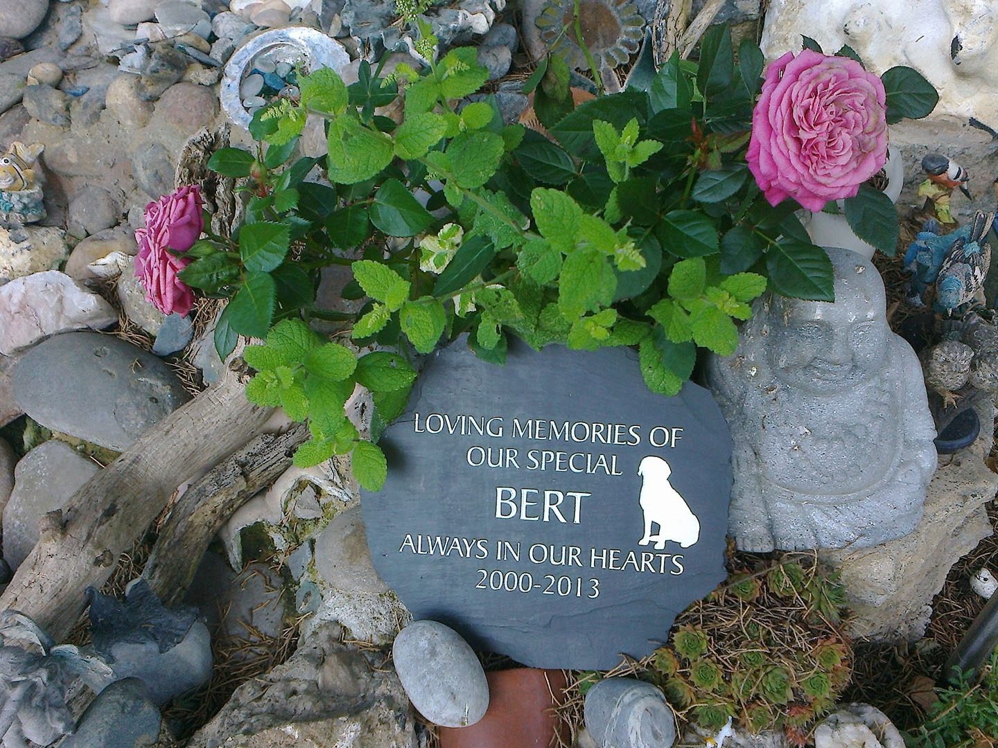 Dog memorials stones gravestones and pet markers for Garden designs for dogs