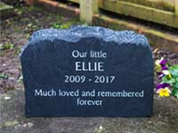 memorial for cat ellie thumbnail