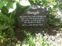 memorial with lovely goodbye message to pet bungle rip