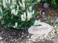 sandstone memorial for lost dog humphrey