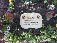 sandstone memorial plaque for candy zoomed out