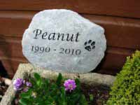 stone memorial for peanut the cat 1990 to 2010