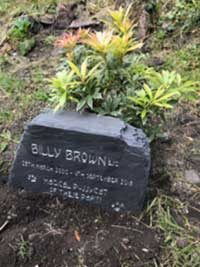 billy brown headstone