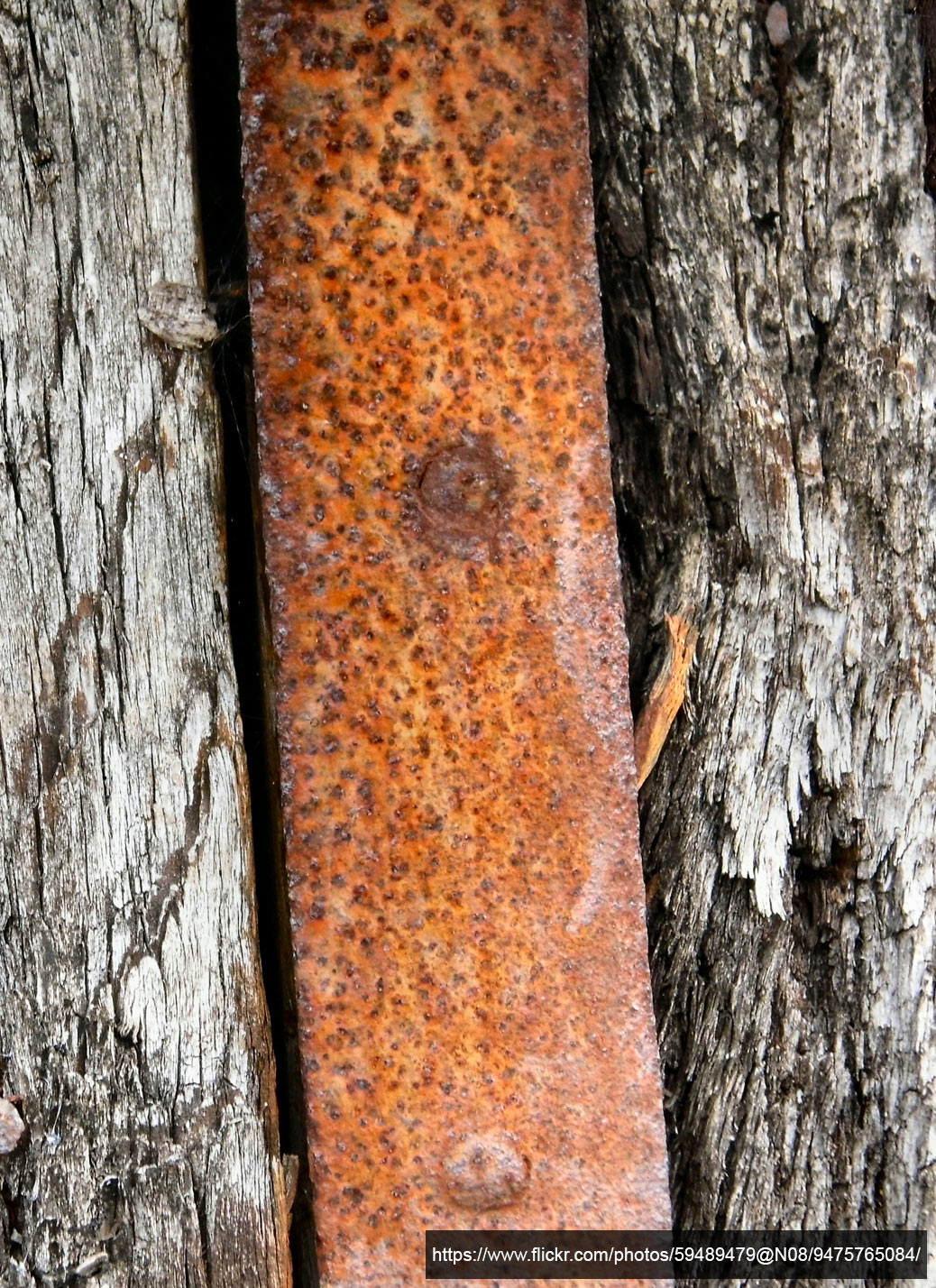 wood and rusted metal