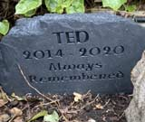 headstone for companion ted