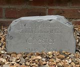 memorial with text in loving memory of beloved chester the dog