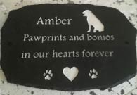 plaque for amber with message pawprints and bonios in our hearts for forever