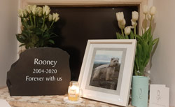 Slate Freestanding Headstone For Western Terrier Rooney 2004 2020 With Message Forever With Us Thumbnail